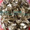 西藏林芝波密县特级干松茸 不开花童子菇 2010年7月新货