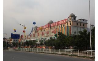 深圳市先朗食用菌交易市场 (18)