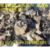 毛木耳,毛木耳菌种,毛木耳批发,毛木耳,毛木耳