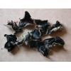 山东济宁鱼台出售毛木耳。黑木耳