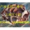 榆耳厂家直销 质量保证 13964982885