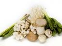 蘑菇里测出甲醛 食用菌安全受威胁