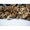 古田茶树菇/茶薪菇/杨树菇厂家批发电话15160150659