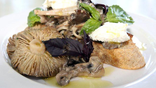 Mushroom ragout taste signature