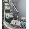 台湾菌菇输送线滑子菇输送机草菇输送机 虫草生产线