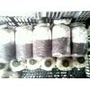 食用菌二级菌种(茶树菇、平菇、金针菇、姬菇、秀珍菇、等原种)