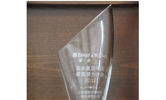 """雪榕生物当选为""""2012安永复旦中国最具潜力企业"""""""