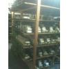 供应茶树菇,杏胞菇,银耳,金针,平菇,秀珍菇,黑木耳等菌种