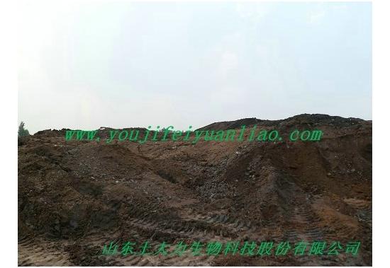 有机肥原料生产中心之食用菌蘑菇渣 (5)