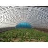 瓜果大棚 蔬菜大棚 温室大棚 瓜果大棚 镀锌瓜果大棚