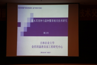 体系技术交流:姚方杰,黑木耳育种与菌种繁育相关技术研究 (2)