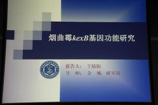 主题报告:王婧阳,烟曲霉蛋白内切酶KexB生理功能的研究 (3)