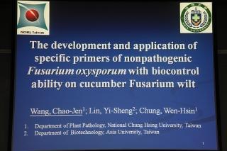 主题报告:王照仁,胡瓜萎凋病生物防治菌-无病原性尖镰胞菌专一性引子对之开发与应用 (5)