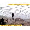 质优价廉的温室大棚,蔬菜大棚,养殖大棚基地