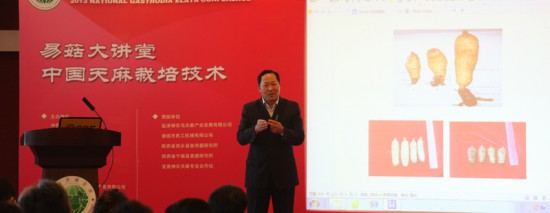易菇大讲堂之《中国天麻栽培技术》在北京开讲