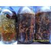 天麻蜜环菌-萌发菌-玉米菌-枝条菌-天麻蒴果-天麻种植技术