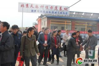 北京大棚天麻种植让参会代表大开眼界