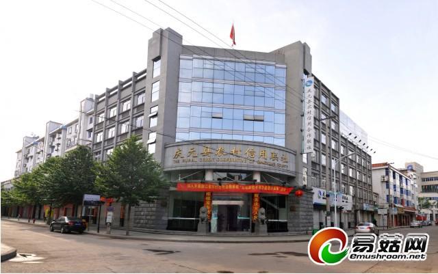 庆元县农村信用联社大楼3
