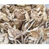 长期茶树菇 批发 全国供应