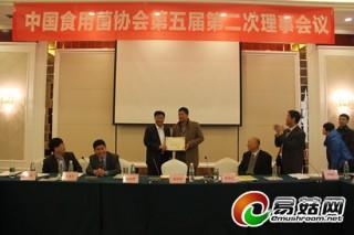 中国食用菌协会举行2013年优秀分支机构评选及表彰