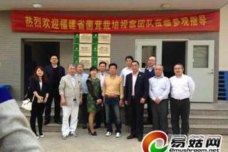平野培养中心参观绿宝杏鲍菇工厂