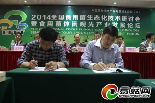 中国香菇文化村打造产业联盟 助推我国食用菌产业大发展