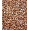 鸡松茸的生产和批发