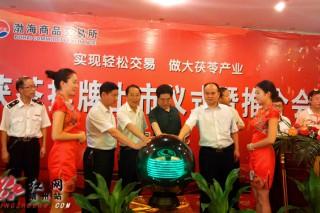 靖州茯苓抢滩电子交易平台进军国际市场