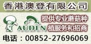 香港澳登有限公司
