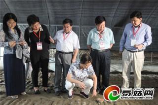 贵州省食用菌产业发展迎来院士专家考察指导