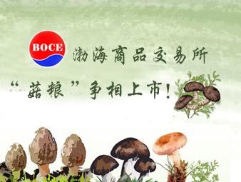 """渤商所""""菌企""""争相上市 电商撬动资本红利"""