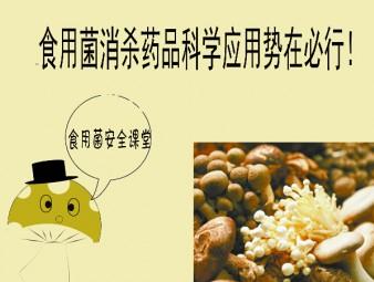 """食用菌安全面临""""高烧""""不退  消杀药品科学应用势在必行!"""