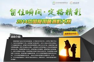 神农缘·2014中国食用菌摄影作品大赛官网