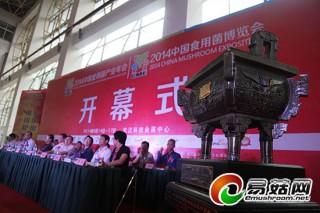 庆祝湖北省食用菌协会成立三十周年授鼎仪式在菌博会期间举行