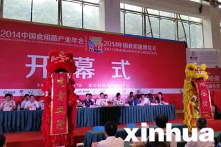 湖北农业网:2014中国食用菌博览会暨中国食用菌产业年会在武汉召开
