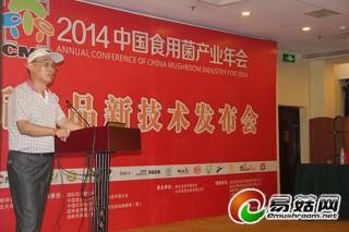 丁应华:工厂化生产将成为香菇产业发展的趋势