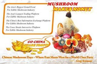 我的平台我做主 开放的舞台因您而更精彩——中国蘑菇节组委会致中国食用菌产业同仁的公开信