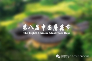 第八届中国蘑菇节第一轮通知