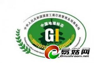 """中国香菇文化村""""远安香菇""""获二项地理标志认证"""