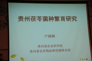 专题报告:卢颖颖《贵州省农作物品种资源研究所》2 (3)