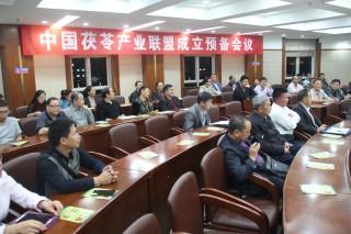 茯苓产业联盟成立预备会议4 (3)