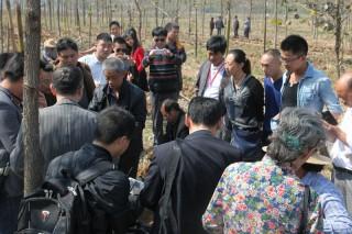 参观考察:英山县远志中药材种植专业合作社4 (3)