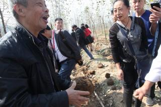 参观考察:英山县远志中药材种植专业合作社3 (3)