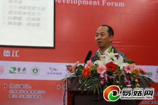 刘杏忠:我国食用菌产业技术水平整体偏低