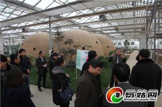 华盛绿能太阳能现代农业生态园博得专家学者广泛肯定