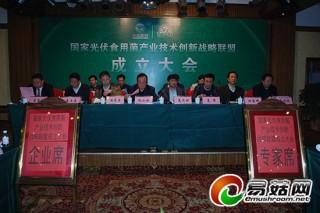 万鲁长:国家光伏食用菌产业技术创新战略联盟的构建是产业的紧迫需求