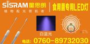 中山市星思朗光普电器科技有限公司