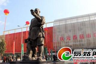 """丽水""""中国香菇城""""营业 集旅游、购物于一体"""