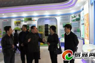 国家黑木耳联盟对常务理事单位进行考察 ——黑龙江省农垦总局科学院经济作物研究所