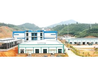 顺昌:海鲜菇产业发展壮大 龙头引领天地宽